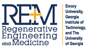 Georgia Center for Regenerative Engineering & Medicine (REM)
