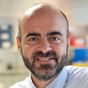 Prof. Paolo De Coppi, PhD, MR, MD